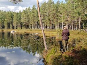 Apportering vid sjö - Kennel Huntrets