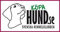 Köpa hund Svenska kennel klubben