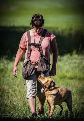 Hundträning Selléns Hundskola