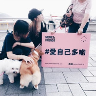 【#愛自己是 - 義工系列】一遇到狗就失控的義工隊。_._www.memesan