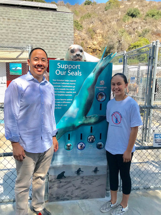 Educating Kids at Pacific Marine Mammal Center in Laguna Beach