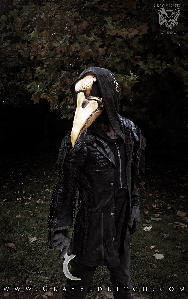 Plague Doctor/Raven Mask