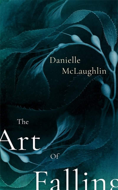 The Art of Falling - Danielle McLaughlin