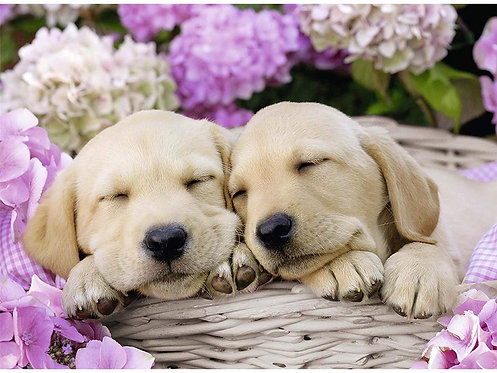 Sweet Dogs in a Basket Ravensburger Jigsaw