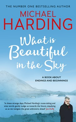 What is Beautiful in the Sky - Micheal Harding