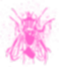 PINKFLY_STENCIL.png