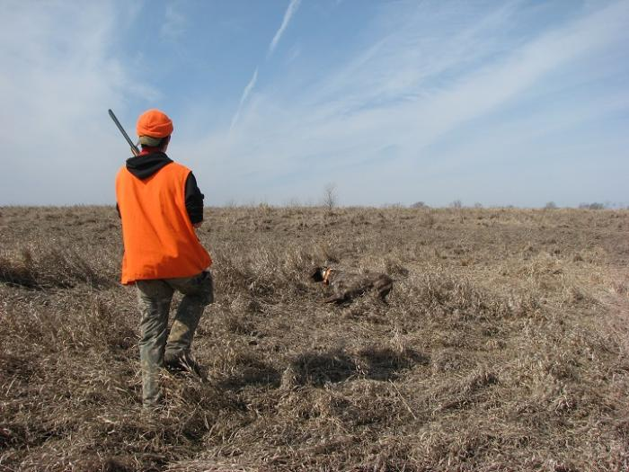 2015 MDS MWT Youth and Hunters with a Disability Pheasant Hunt action
