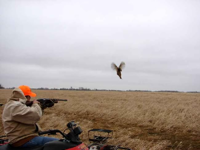 2009 Youth & Disabled Pheasant Hunt