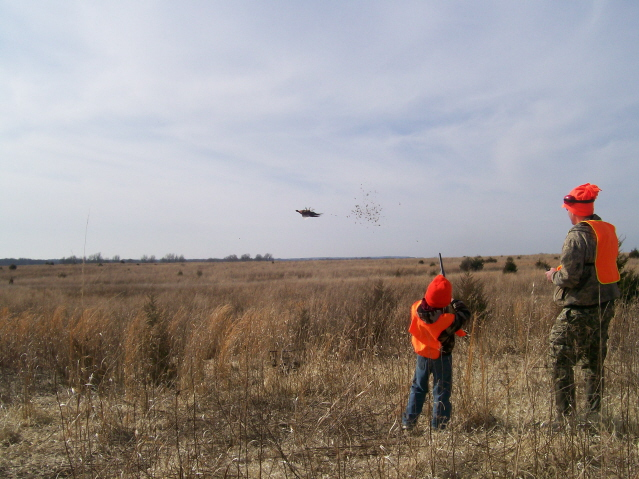 2011 MDS Youth & Disabled Pheasant Hunt (3)