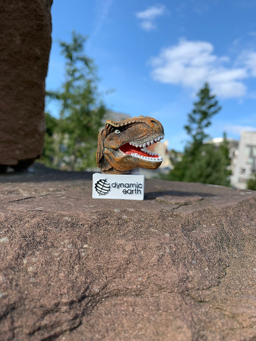 DE T-Rex Head Magnet