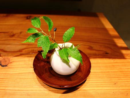 鎌倉和食 楠の木 ブログ始めるってよ。