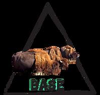 group logo-3.png