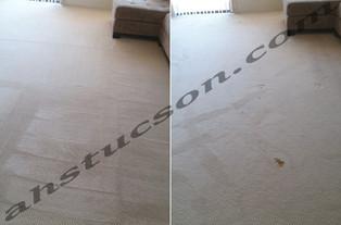 carpet-cleaning-20180413_114029.jpg