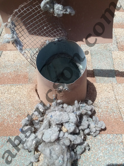 DRYER-VENT-CLEANING-20180416_123159(0).jpg