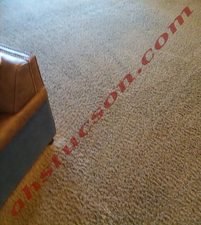 carpet-cleaning-20171122_092841.jpg