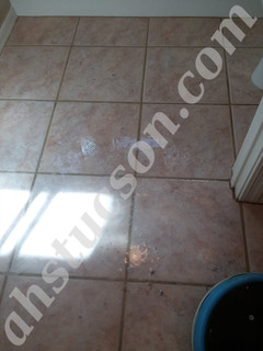 Tile-and-grout-cleaning-20180315_103943.jpg