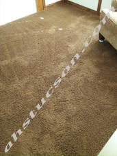 Carpet-cleaning-20171204_135903.jpg