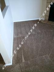 carpet-cleaning-20171113_104822.jpg