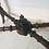 Thumbnail: C.1870 Mahogany Aesthetic Movement Window Table