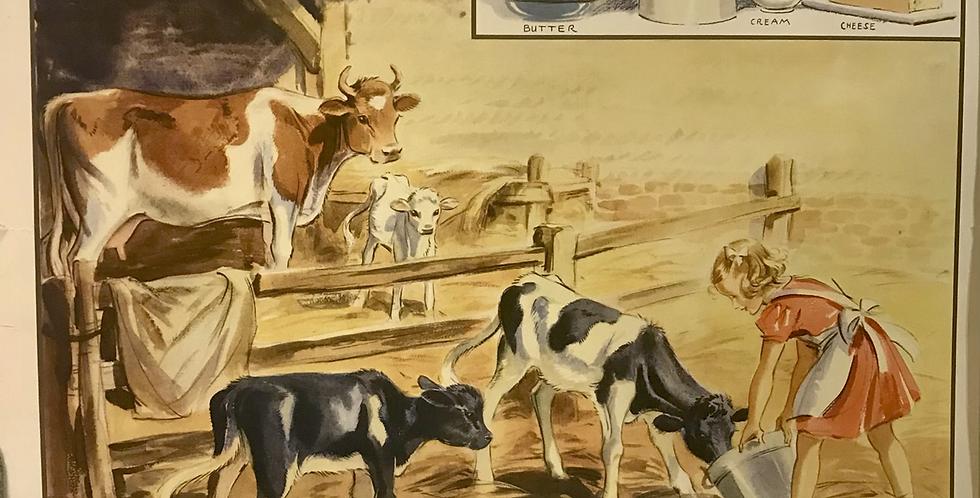 Vintage Macmillan School Poster