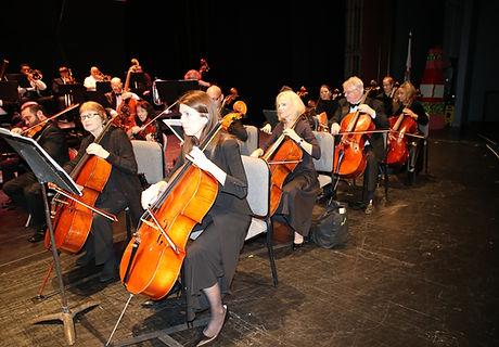 cellos1.JPG