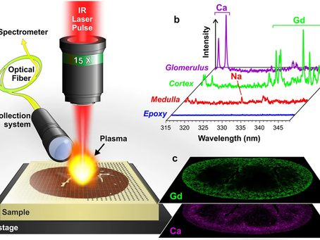Laser Attenuators and Laser-Induced Breakdown Spectroscopy in 3D imaging