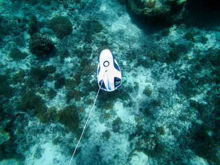 Lasers in Research Applications for Oceanographic Monitoring