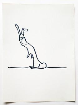 slinking rabbit