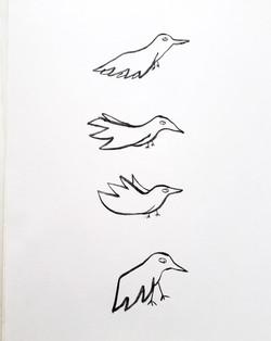 Birds x 4