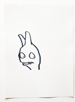 rabbit not friendly