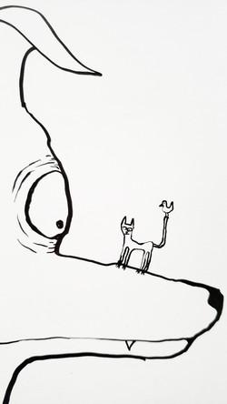 dog, cat, bird, detail.
