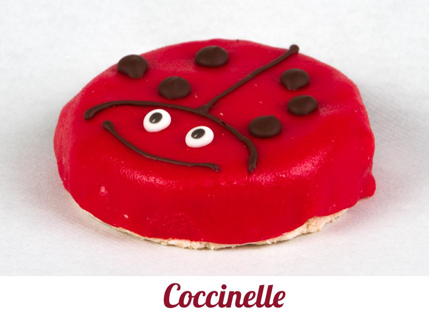 Coccinellette