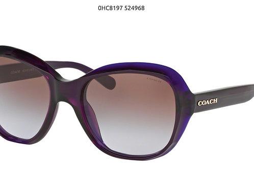 COACH Deep purple 55-19-140 com pasta