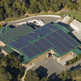 STAGS' LEAP WINERY_NAPA, CA_ 226 kW DC