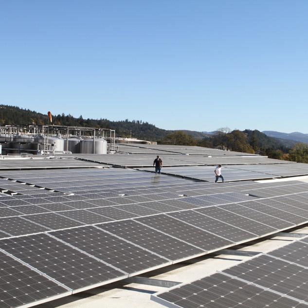 CHARLES KRUG_ST. HELENA, CA_1,178.10 kW DC