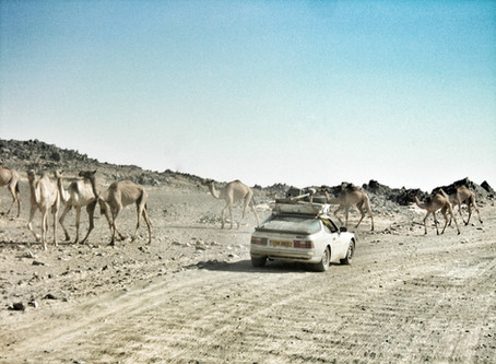 The Art of Overlanding 02 - Five Routes Across the World