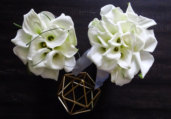 Amy + George   BOUQUETS + PHOTO Angelic Affairs   THEME Rustic modern elegance  COLOR SCHEME White + green