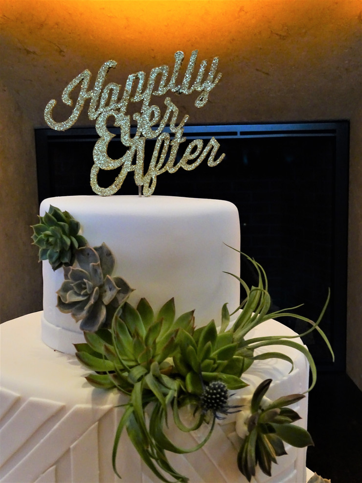Freshly Modern in the City Cake Decor + Coordination