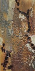 Texture Study (earth tone)