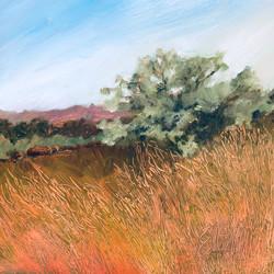Ellen Metzger O'Shea_ Grasslands Tree