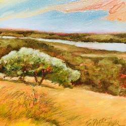 Ellen Metzger O'Shea_Tree at Sanford Farm