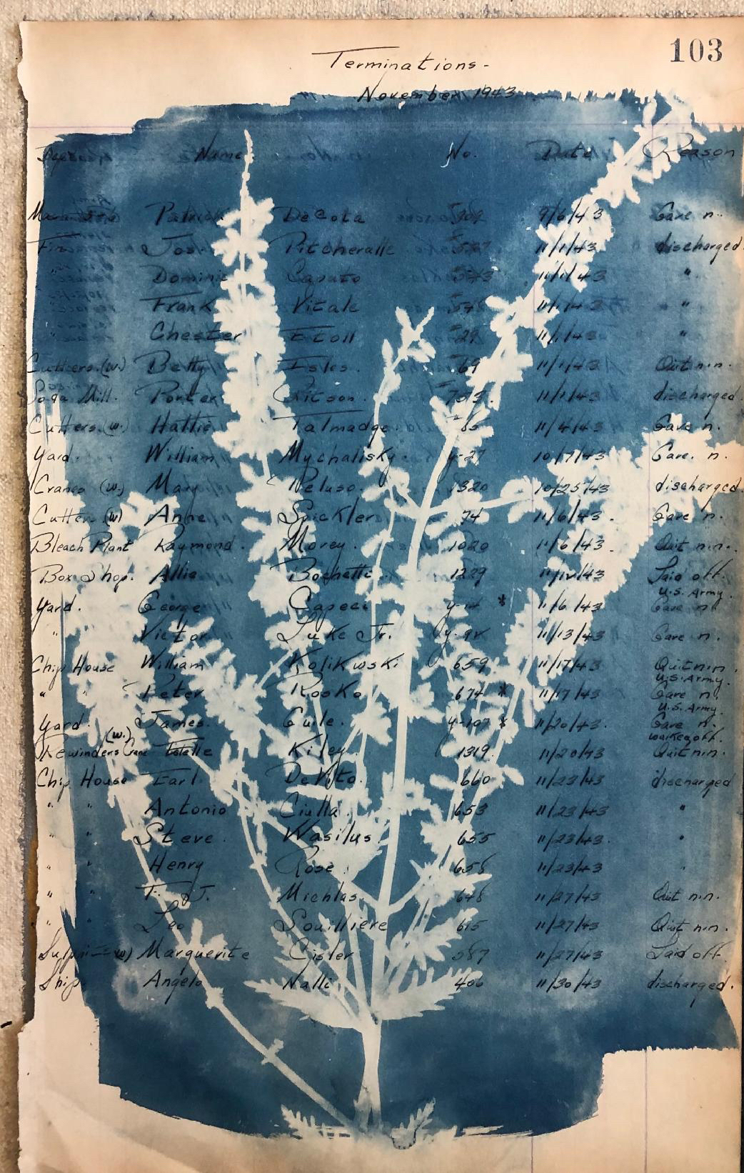 Termination_cyanotype
