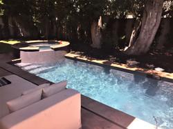 Modern Long & Narrow Pool & Spa