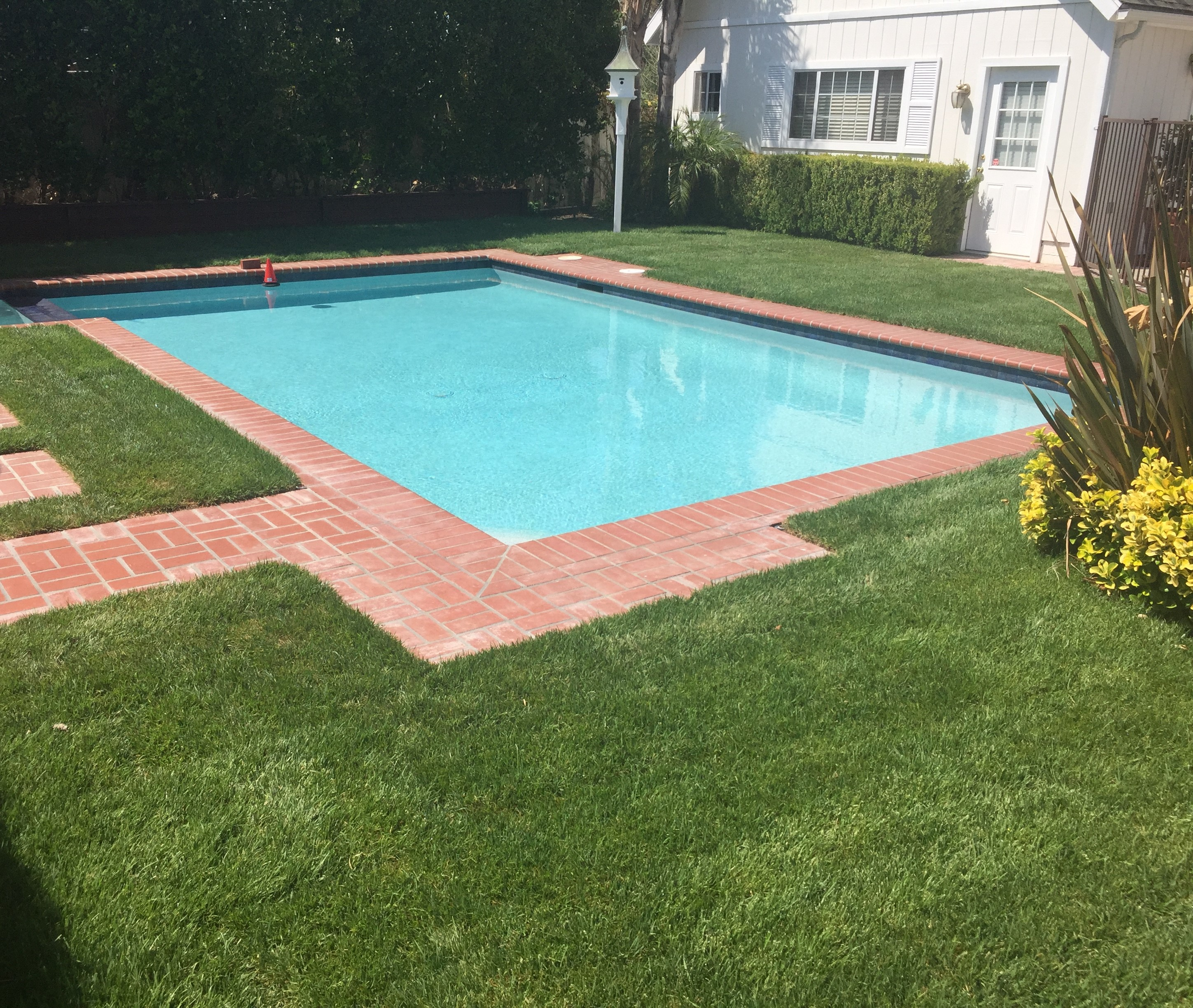 Pool with Brick Paving Surround