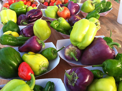 The best summer vegetables