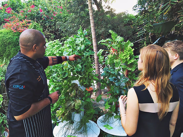 Garden to Table at Essensia