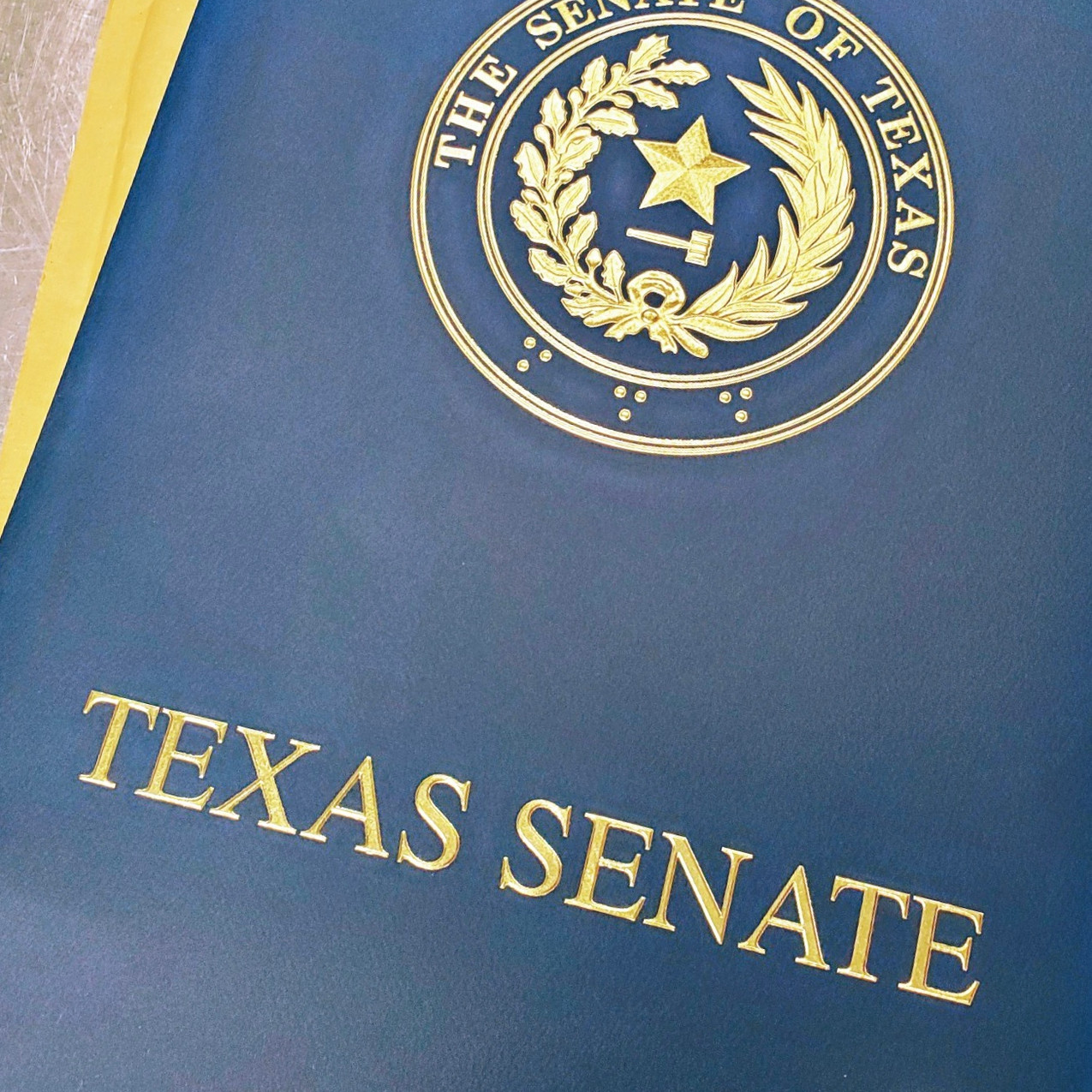 """Lovage short film """"There's Something In The Water"""" received recognition from the Texas Senate commedning the filmmaking team."""