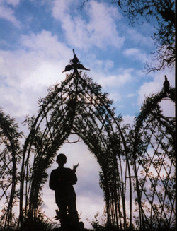 Living Willow Gothic Arch