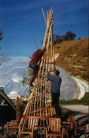 Eden Project Giant Cones