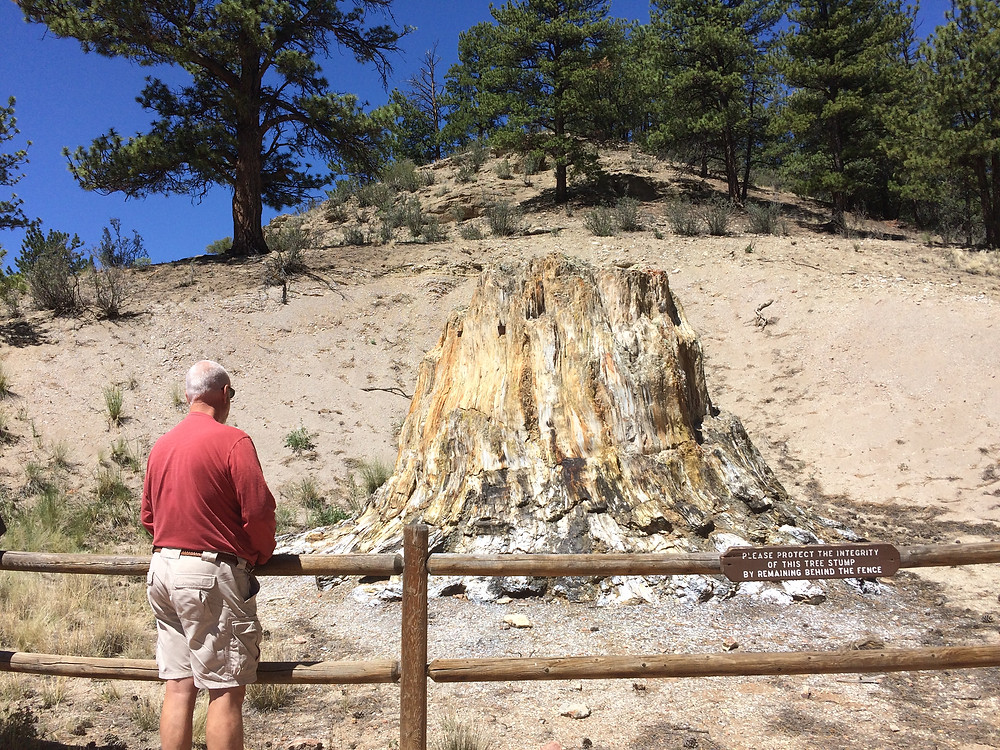 Florissant Fossil Bed National Monument